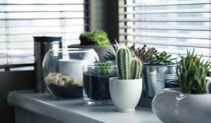Woning interieur tips